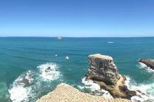 奥克兰鸟岛 今天出发去鸟岛和奥克兰市中心最有名的海滩。出门前先解决个小问题:新西兰从2013年11月