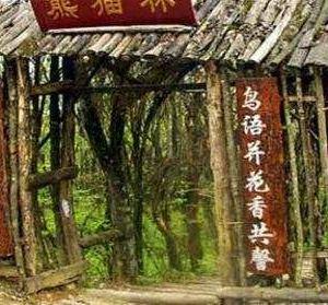 熊猫林旅游景点攻略图
