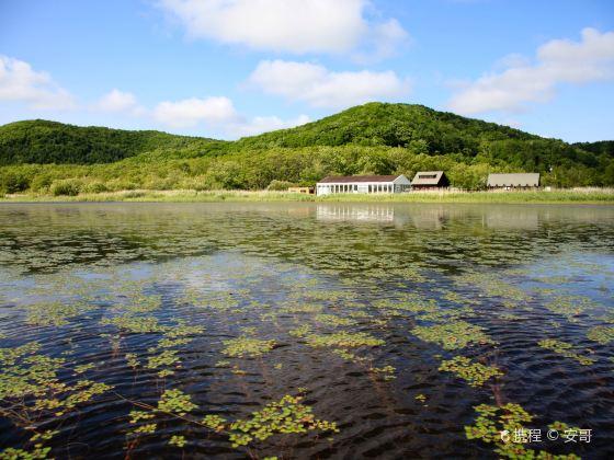 釧路濕原國立公園