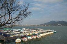 玄武湖•冬