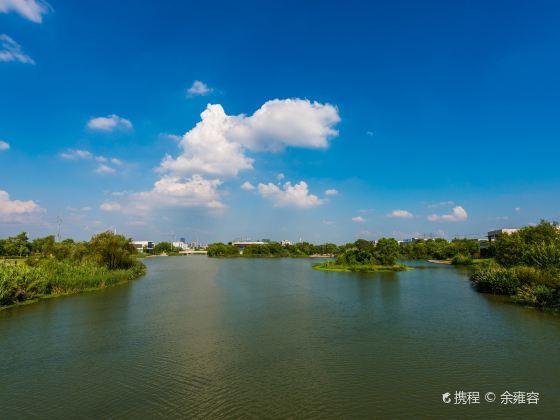 九裡河濕地公園