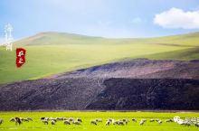 海拉尔|直视边疆垦荒,走进物产丰饶的大草原【贰】