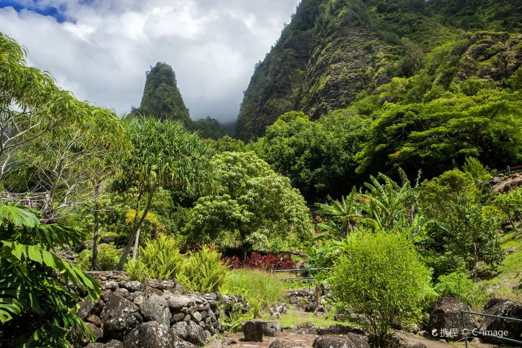 Iao Valley State Park1