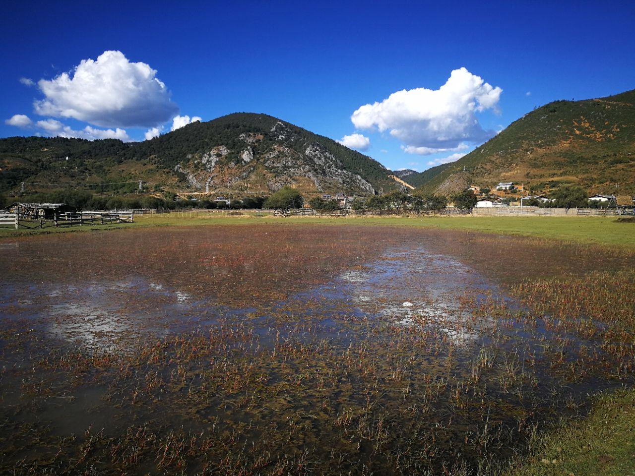 石林峡周边_如果是去云南五日游的话,想去香格里拉及周边应该怎么安排 ...
