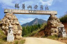 福建龙华山景区。路陡、崖险,奇花异草、怪石嶙峋、峰峦叠嶂、云