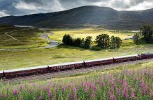 高大上|除了东方快车,世界上还有很多奢华高端的列车等着你去体验!