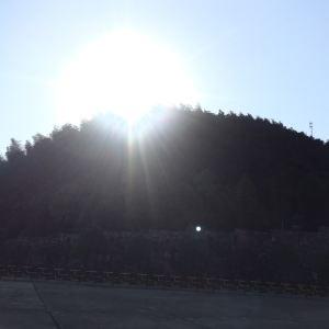 桃花江竹海风景区旅游景点攻略图