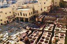 菲斯古城📷大染缸📷