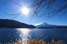 河口湖。富士山