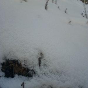 太子岭滑雪场旅游景点攻略图