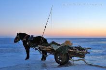 【渔人的搏斗】- 冬天就要去查干湖看捕鱼