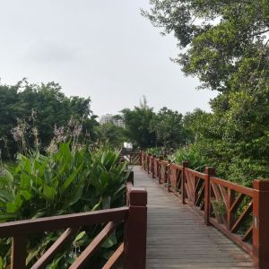 东湖公园旅游景点攻略图