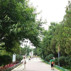 兰山公园旅游景点攻略图