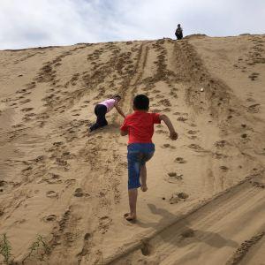 塔敏查干沙漠旅游景点攻略图