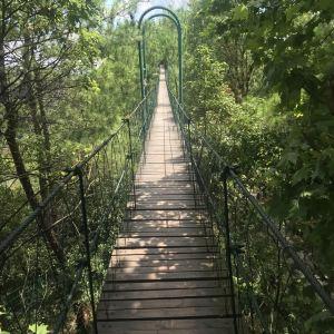 同心桥旅游景点攻略图