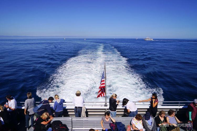 Boston Harbor Cruises3