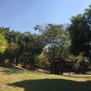 堤角公园旅游景点攻略图