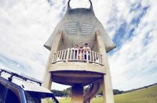 带着丫头看世界之小浜岛环岛记 小浜岛的最西边,有一个叫做细崎的地方,这里有个海人公园,一个霸气的鳐鱼