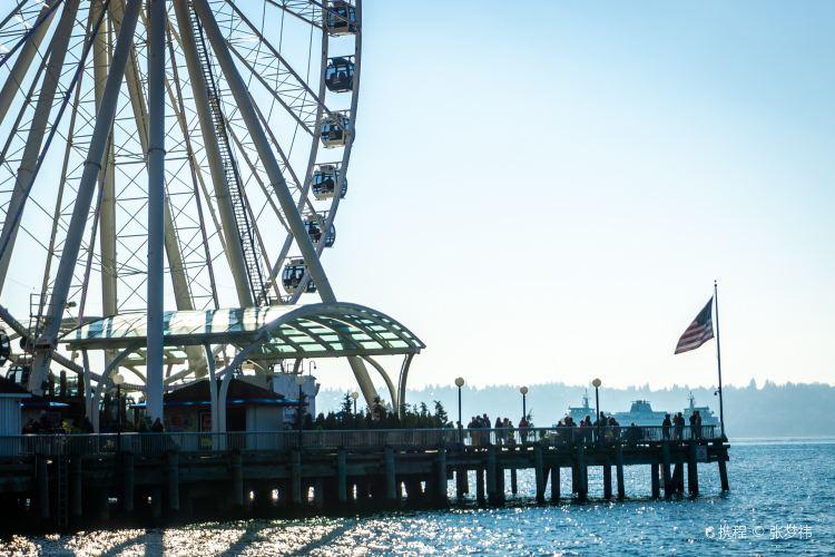 Seattle Great Wheel1