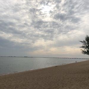 海阳万米沙滩旅游景点攻略图
