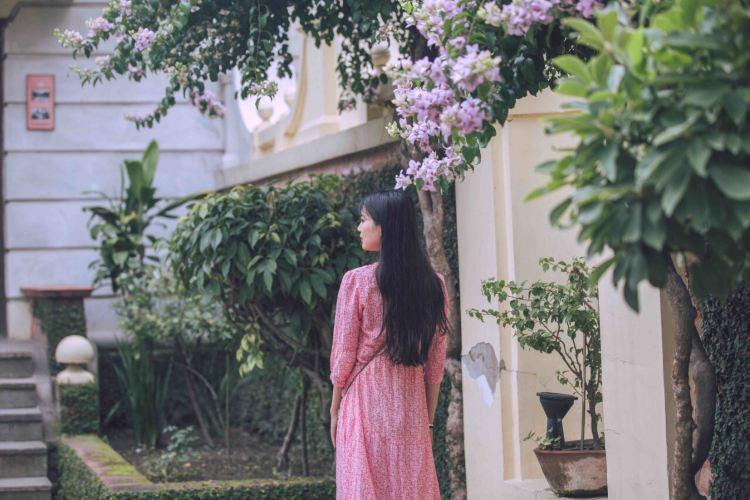 Garden Of Dreams4
