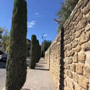 阿维尼翁老城旅游景点攻略图