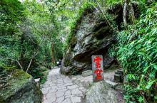 武夷山,岩茶与美景均可兼得