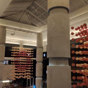 乐美中餐厅旅游景点攻略图