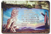以根为媒!打造休闲养生福地的一张金名片——三山根邑·东方醒狮园