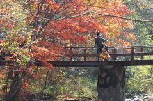 秋天里的童话 醉游老边沟