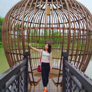 新西塘越里旅游景点攻略图