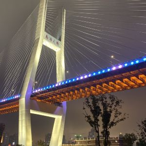 南浦大桥旅游景点攻略图