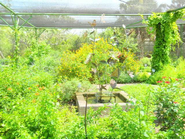 South Texas Botanical Gardens & Nature Center2