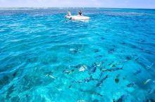 瓦努阿图 | 遗世天堂,骇德威岛码头旁有个唯美玻璃栈道