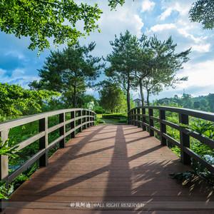 佛冈游记图文-父亲节,有一道盛夏的绿光——清远佛冈碧桂园度假周末游