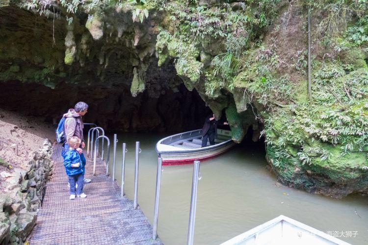 Waitomo Glowworm Caves3