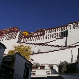 布达拉宫旅游景点攻略图