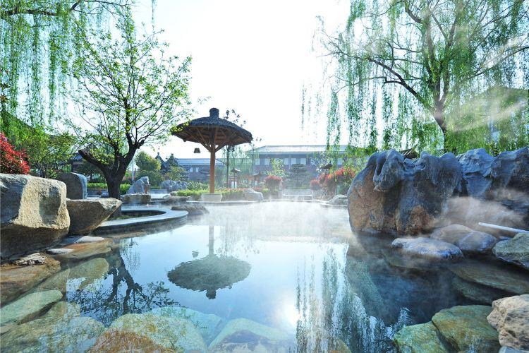 Zhisheng Tangquan1