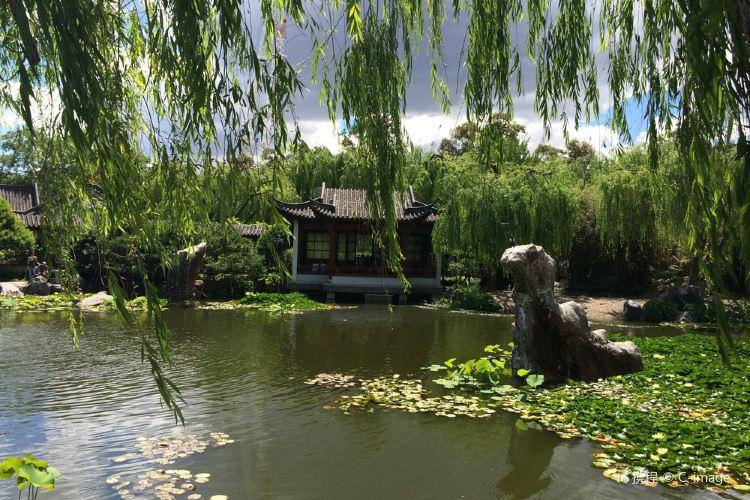 Chinese Garden of Friendship1