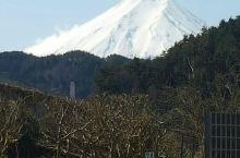 日本难忘之旅
