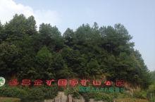 遂昌金矿国家公园