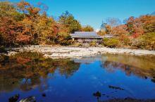 秋季的乐寿园
