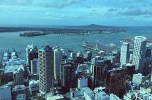 New Zealand- Aukland