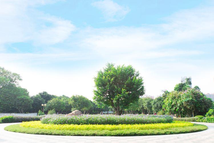 Shangyong Fruit Tree Park3