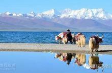 国内最适合年轻人旅行的11个地方,我去过6个,你呢?