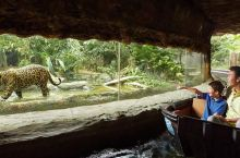 这个国家面积比上海小,却有6家动物园,2020年又开1家