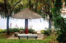 大叻城市花园,从春香湖的中心环岛出发,大约走15分钟