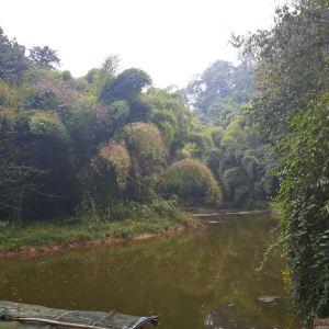 蒲江县朝阳湖白鹭生态自然保护区旅游景点攻略图