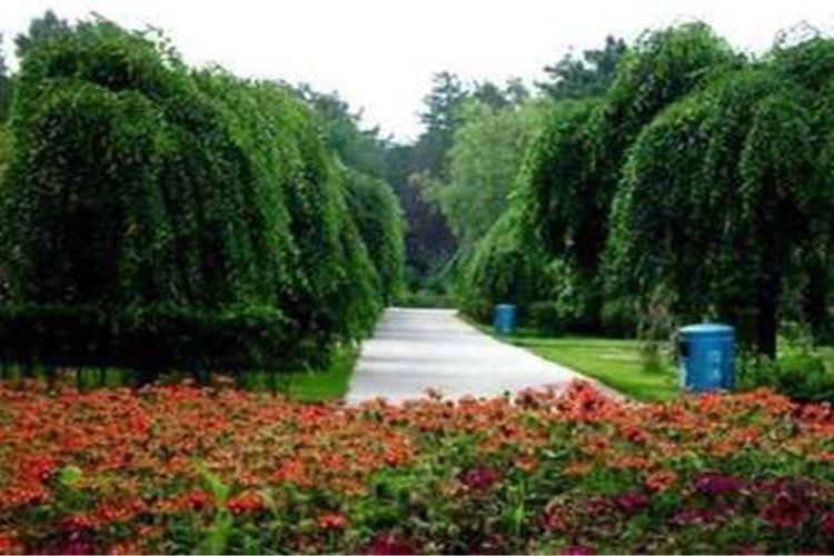 헤이룽장성 삼림식물원3
