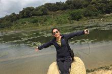 乐东自驾尖峰岭国家森林公园